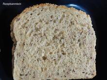 Brot:   KRUSTENBROT, herzhaft  mit Körnern + Saaten - Rezept - Bild Nr. 2