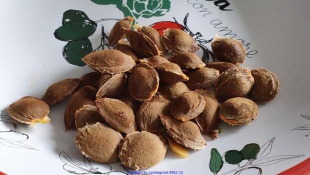 Aprikosencreme (Marillencreme) könnte man auch Fruchtaufstrich nennen - Rezept - Bild Nr. 7