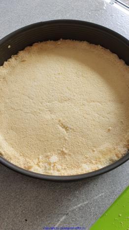 Joghurt Aprikosen Torte - Rezept - Bild Nr. 3
