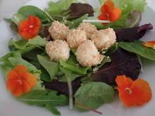 Sesam-Mozzarellakugeln - Rezept - Bild Nr. 10562