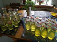 Colastrauch Sirup - Rezept - Bild Nr. 2