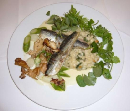 Hering auf Risotto von frischen Wildkräutern und Spargel - Rezept