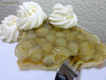 Dessert:   OBST ~ TORTENBODEN, klein  (22cm) - Rezept - Bild Nr. 11382
