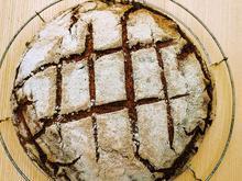 Roggenvollkornbrot - Rezept - Bild Nr. 14167