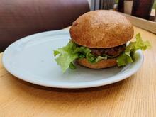 Burger Buns aus Dinkelsauerteig - Rezept - Bild Nr. 14241