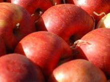 Bratapfel mit Marzipanfüllung - Rezept