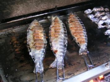 Forelle Am Grill Rezept Mit Bild Kochbar De