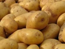 Bunter Kartoffelsalat - Rezept