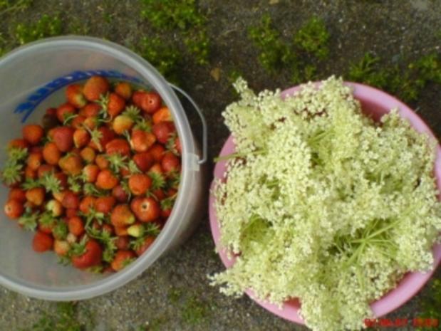 Holunderblüten-Gelee - Rezept - Bild Nr. 3