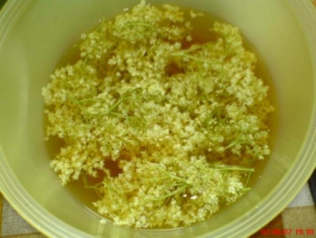 Holunderblüten-Gelee - Rezept - Bild Nr. 5