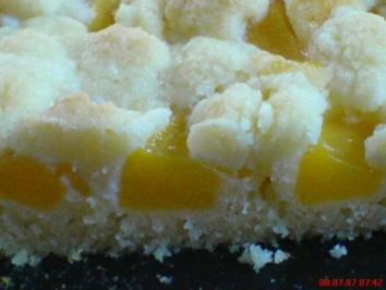Aprikosen-Streusel-Kuchen - Rezept