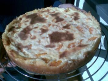 Schmand Mandarinen Kuchen - Rezept