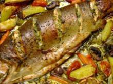 Fisch: Lachsforelle im Gemüsebett - Rezept