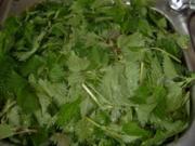 Wildkräuter: Brennnessel-Suppe mit Sauerampfer  in 4 Varianten - Rezept