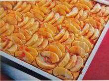 Apfel Quarkkuchen - Rezept