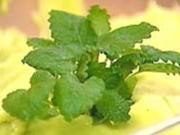 Grüne Creme - Rezept