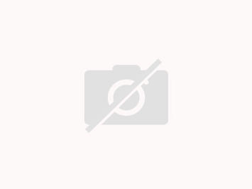 Parmigiana Auberginen oder Zucchiniauflauf - Rezept