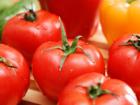 Tomaten richtig säen - Tip