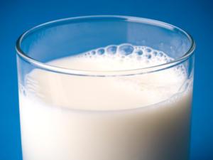 Antibiotika und Milch – ein absolutes No-Go? - Tip