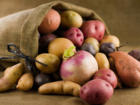 Kartoffeln kochen – simpel, aber erfolgreich - Tip