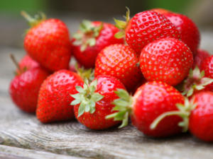 Erdbeeren pflanzen ist nicht schwer - Tip