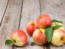 Äpfel lagern: bei der richtigen Temperatur an einem geeigneten Platz - Tip