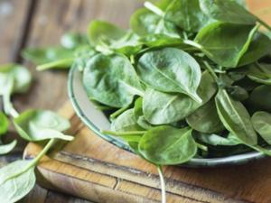 Spinat erwärmen und aufbewahren - Tip