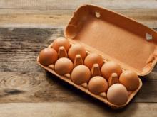 Heller Dotter bei Bio-Eiern - Tip