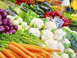 Nahrungsfasern sind Ballaststoffe und wirken sich positiv auf die Darmtätigkeit aus - Tip
