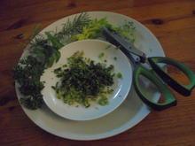 Kräuterschere, 5 paarig - Tip