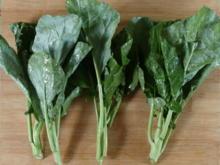 Kai-lan (Chinesischer Brokkoli) - Tip