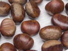 Maronen richtig rösten – Zubereitung mit dem Backofen, Grill oder Kamin - Tip