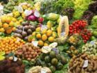 Exotische Früchte – Abwechslung und Vielfalt - Tip