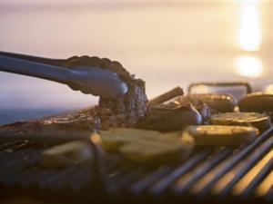 Hier dürfen Sie bedenkenlos grillen - Tip
