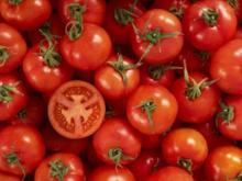 Tomaten blanchieren – eine schonende und vielseitige Garmethode - Tip