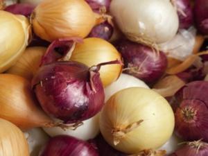 Zwiebeln dünsten leichtgemacht - Tip