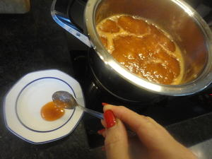 Gelierprobe bei Marmeladen - Tip