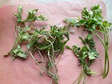 Gartenkräuter- Trocknung im Hochsommer - Tip