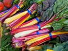 Mangold kochen – aber Blätter und Stiele getrennt - Tip