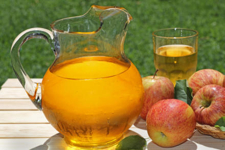 Selber Apfelsaft pressen – keine Hexerei - Tip