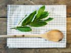 Lorbeer mit der Gartenschere richtig schneiden - Tip