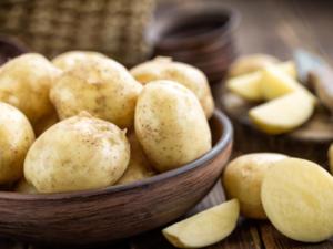 Warum Kartoffeln nicht roh zu genießen sind - Tip