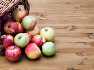 Äpfel einkochen: traditionelle Tricks und neue Rezepte - Tip
