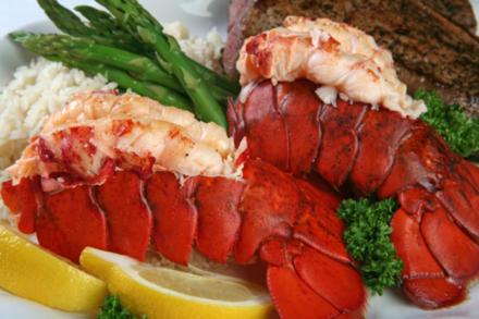 Edle Gerichte perfekt zubereitet: so gelingt Hummer - Tip