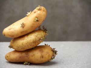 Kartoffeln Schälen Schnell