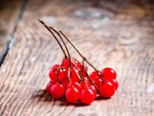 Preiselbeeren einkochen für Desserts und Wildgerichte - Tip