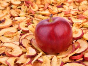Äpfel trocknen – manchmal genügt ein Bindfaden - Tip