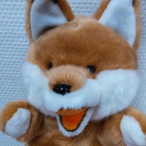 Lady-Foxy
