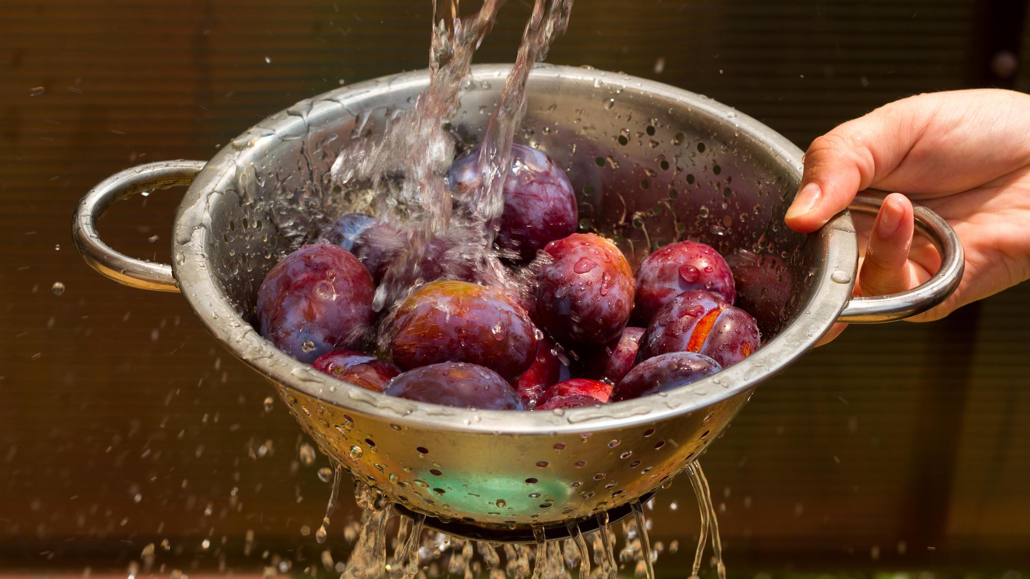 Pflaumen sollten vor dem Verzehr oder der Weiterverarbeitung unter fließendem Wasser gewaschen werden.