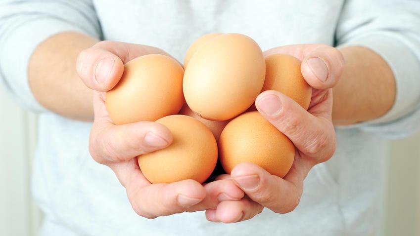 Zwei Hände halten eine handvoll brauner Eier.